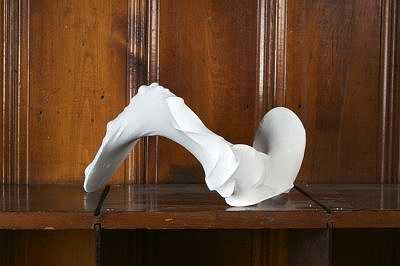 Wave, 2012, wire, pantyhose, gesso, found objects